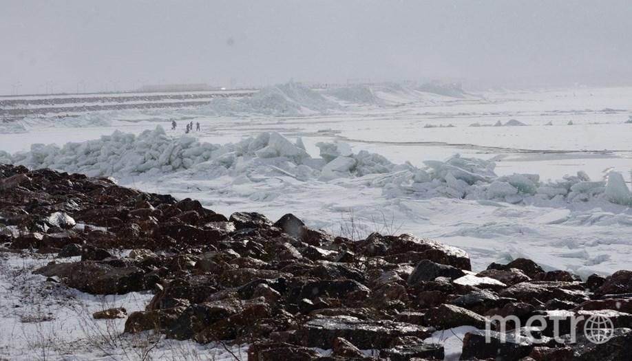 Стена изо льда выросла на петербургской дамбе: Фото. Фото ДТП и ЧП | Санкт-Петербург | Неизданное, vk.com