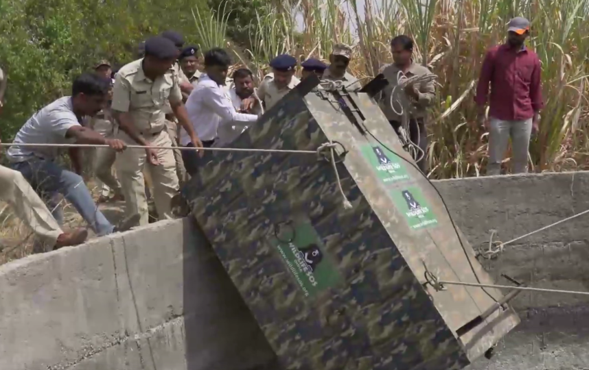 Спасатели использовали клетку, чтобы безопасно вытащить леопарда. Фото Скриншот youtube.com/watch?v=VYTi5jjuHV0