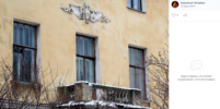 Петербуржцев не устроил ремонт Дома сотрудников Ботсада: там появились