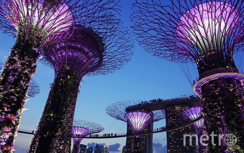 Сингапур. Фото pixabay.com