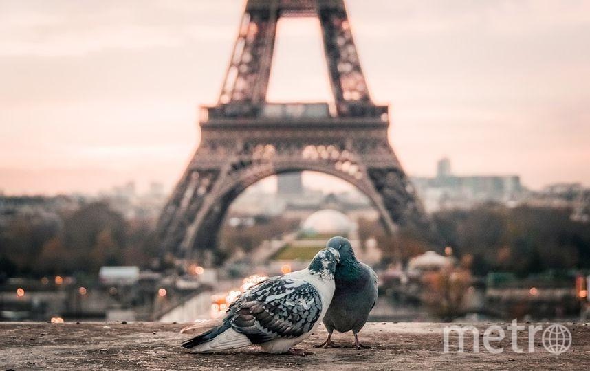 Париж. Фото pixabay.com