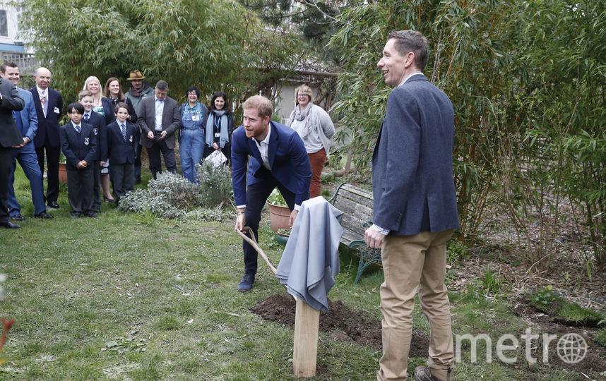 Принц Гарри посетил школу Святого Винсента в западном Лондоне. Фото Getty