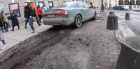 Петербуржец на иномарке паркуется прямо на клумбах в центре: Видео