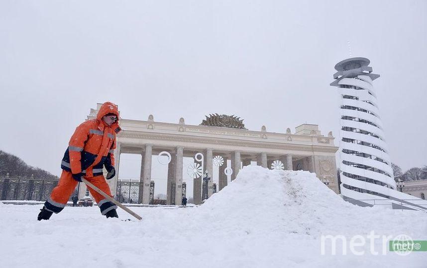 На следующей неделе ожидается последняя атака русской зимы. Фото Василий Кузьмичёнок