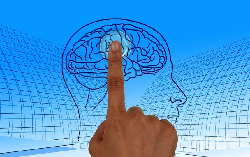 Стволовые клетки мозга выглядят старше при РС. Фото Pixabay