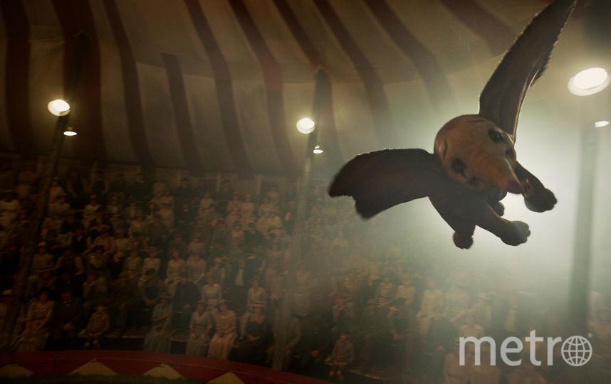 """Кадр из фильма """"Дамбо"""". Фото """"Уолт Дисней Компани СНГ"""""""