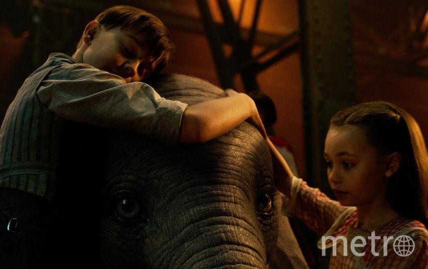 "Кадр из фильма ""Дамбо"". Фото WDSSPR"