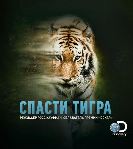 """Фильм """"Спасти тигра"""". Фото Предоставлено организаторами"""