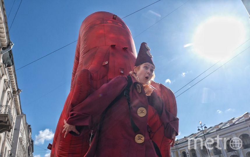 """Улитка прогулялась по улицам Петербурга. Фото Алена Бобрович, """"Metro"""""""