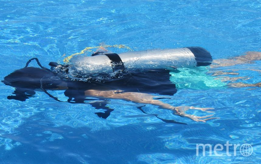 Бассейн станет идеальным местом для тренировок профессиональных аквалангистов. Фото pixabay.com