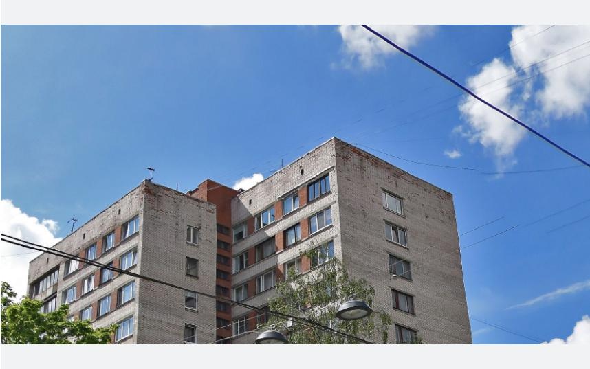 Инцидент произошел на 2-ом Муринском проспекте. Фото Яндекс.Панорамы