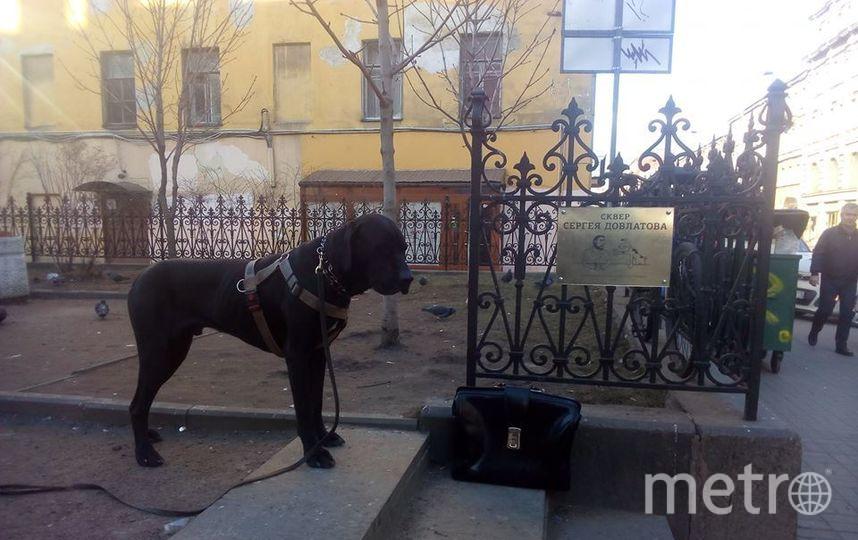 """Табличка в сквере. Фото vk.com/valeriy_georgievich, """"Metro"""""""