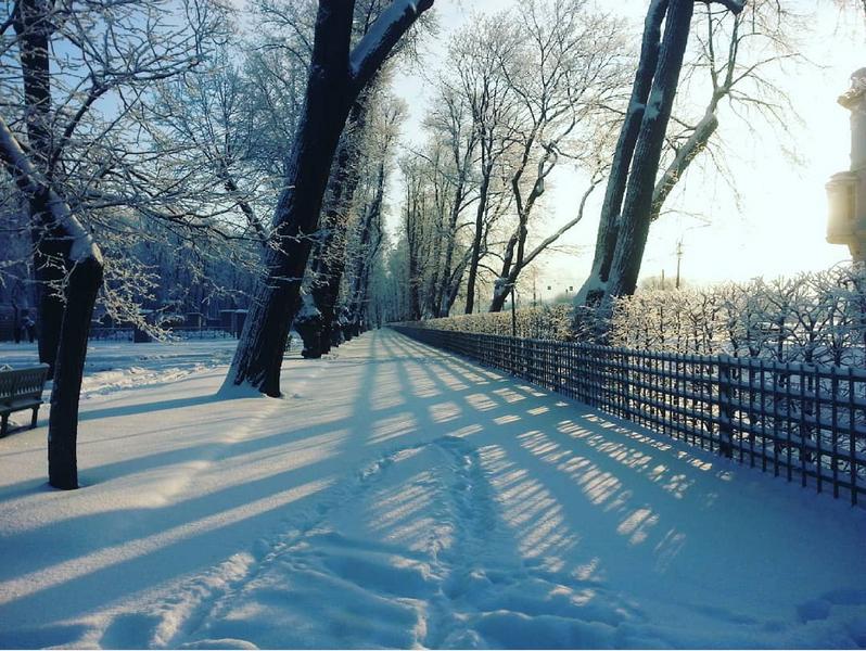 Выборг завалило снегом: Instagram пополнился холодными фото. Фото Скриншот Instagram: @andreiivanovru