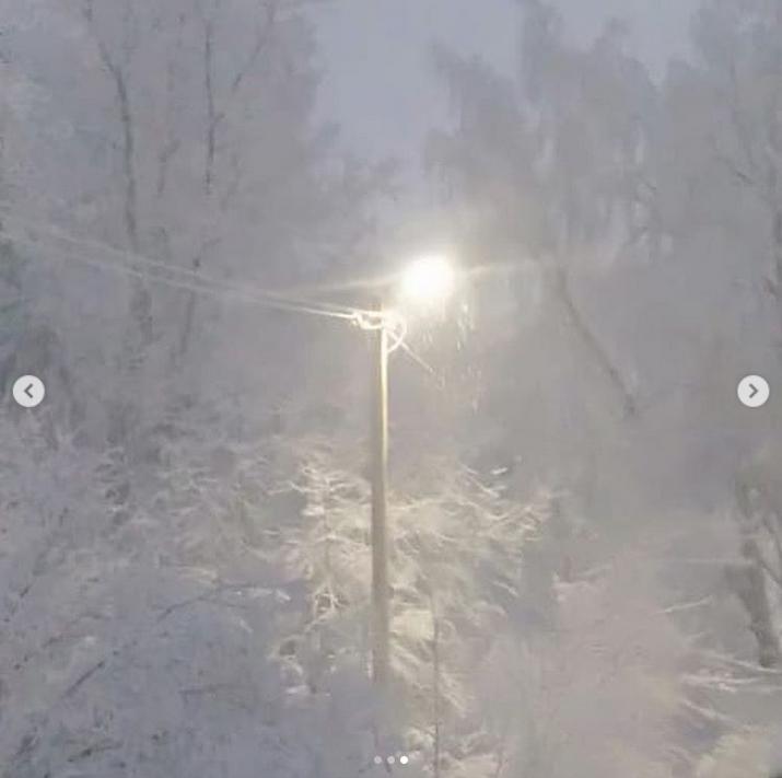 Выборг завалило снегом: Instagram пополнился холодными фото. Фото Скриншот Instagram: @milochka_mamulechka