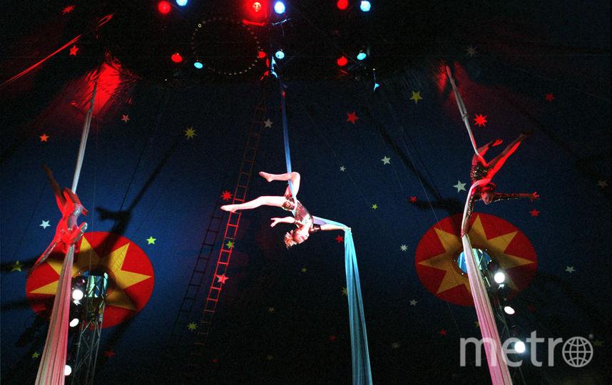 Цирковое шоу: архивное фото. Фото Getty