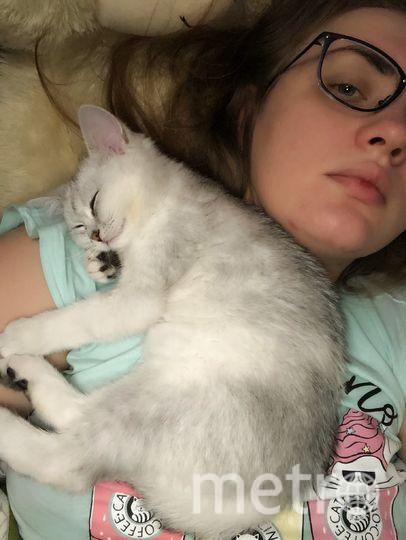 """Джессика отдыхает после тяжелого """"трудового"""" дня. Фото Катерина Прошунина."""