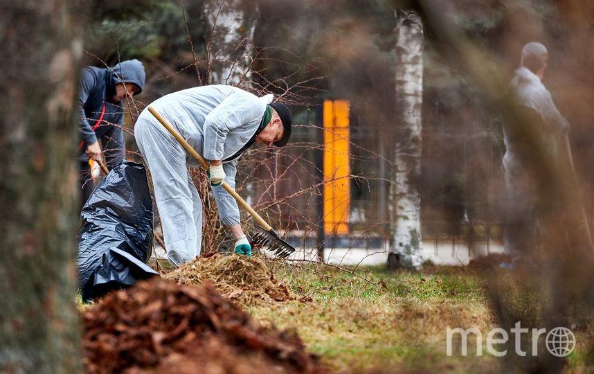 Фото: пресс-службы мэра Москвы. Фото mos.ru