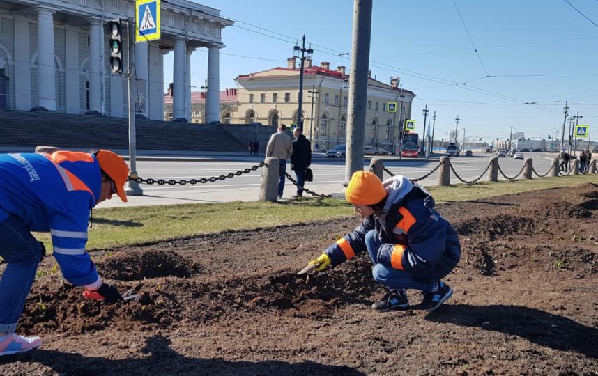 "Фото Комитета по благоустройству Санкт-Петербурга. Фото gov.spb.ru, ""Metro"""