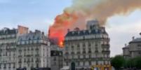 У горящего собора Парижской Богоматери обрушились шпиль, часы и крыша (видео)