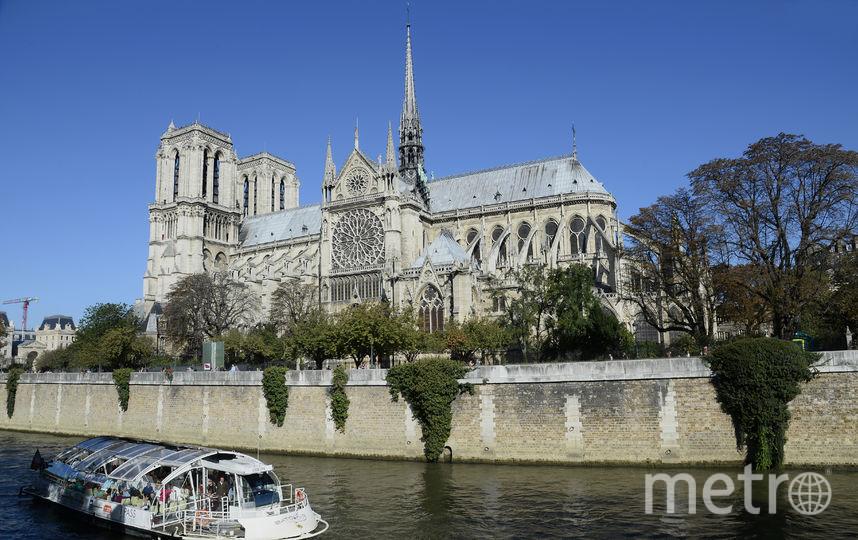 Собор Парижской Богоматери. 2014 год. Фото AFP
