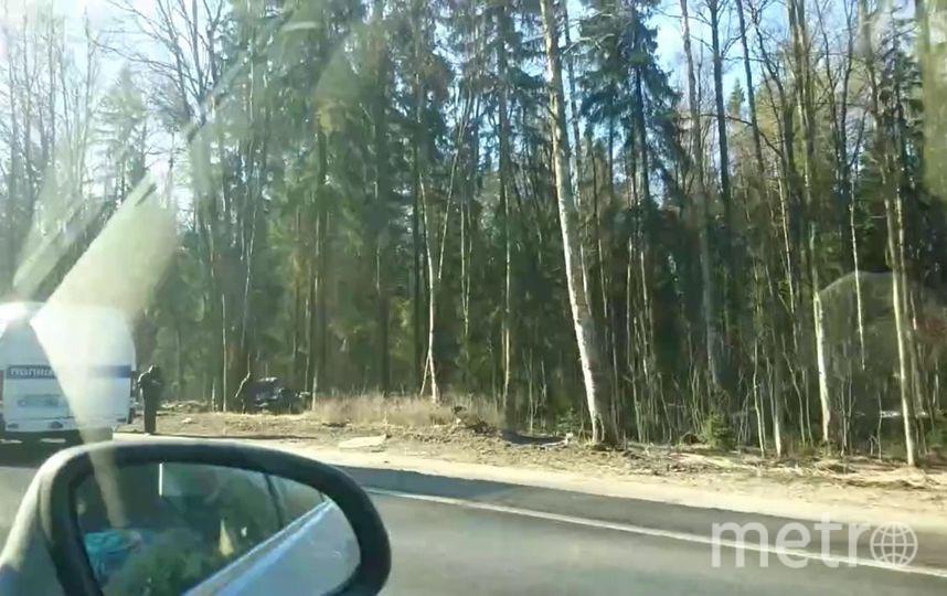 """Фото с места ДТП на Приморском шоссе. Фото https://vk.com/spb_today, """"Metro"""""""