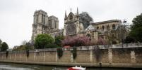 На реставрацию собора Парижской Богоматери собрали около миллиарда евро
