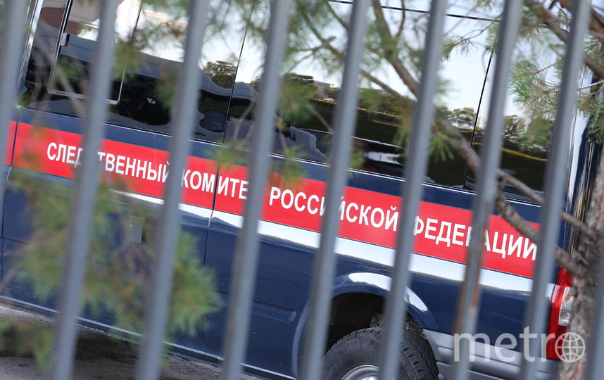 Мужчине, напавшему с молотком на сотрудницу метро в Москве, предъявлено обвинение. Фото Василий Кузьмичёнок