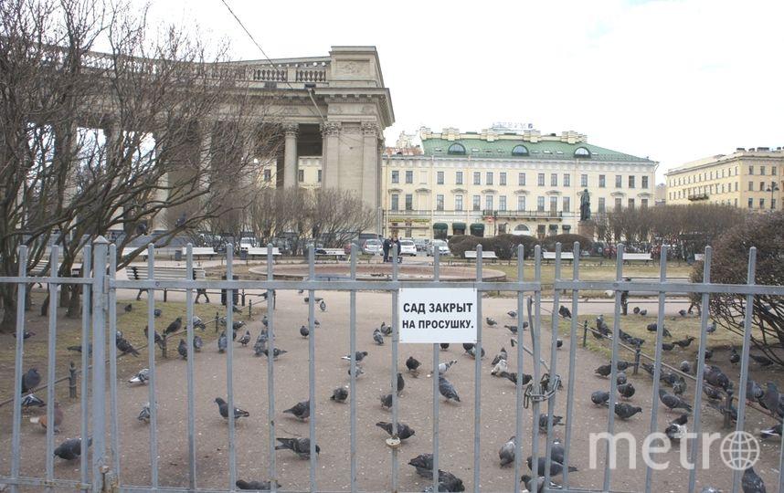 """Сады в Петербурге откроют после просушки 20 апреля. Фото архив, """"Metro"""""""