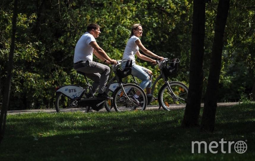 Отдыхающие катаются на велосипедах в столичном парке. Фото РИА Новости