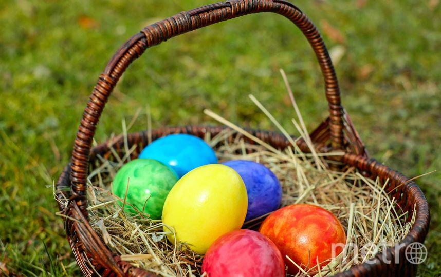 Яйца. Фото Pixabay