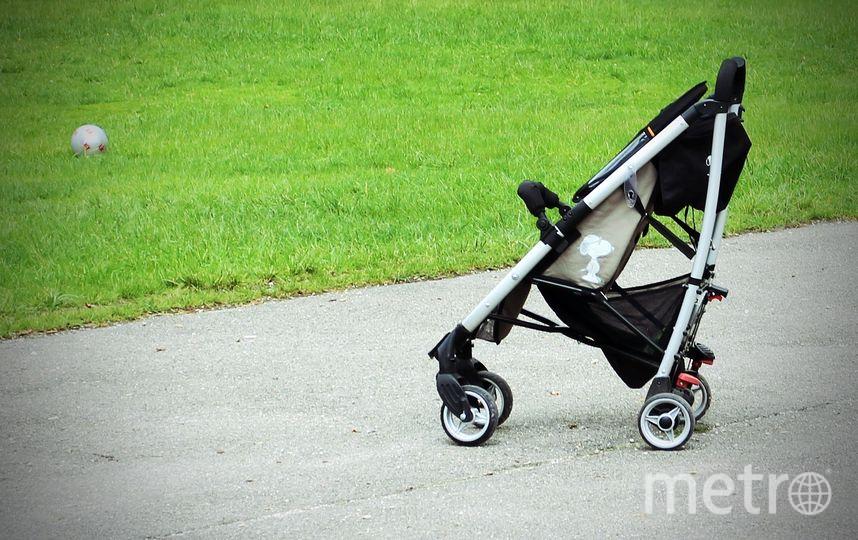 Запуск сервиса по аренде детских колясок намечен на 1 июня. Фото pixabay.com