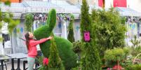 Картины из разноцветного вереска, зелёные кролики и розовый рояль: как украсят Москву к пасхе