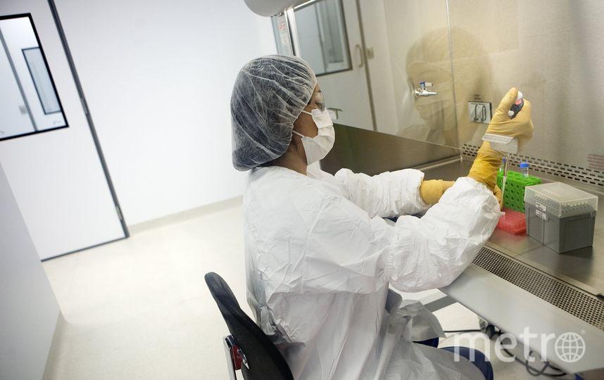 Малави является первой из трёх стран, выбранных для экспериментального внедрения вакцины. Фото Getty