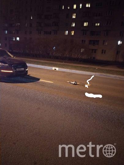 В Петербурге насмерть сбили пенсионерку на пешеходном переходе. Фото ДТП и ЧП | Санкт-Петербург | Питер Онлайн | СПб, vk.com