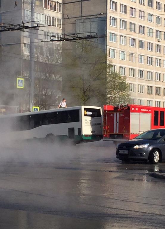 Автобус провалился под асфальт в горячую воду в Петербурге. Фото https://vk.com/spb_today