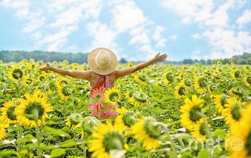 Согласно ВЦИОМ, абсолютное большинство (86%) граждан чувствуют себя в целом счастливыми. Фото pixabay.com