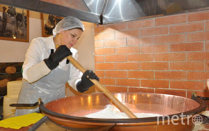 Производства сыра. Фото Предоставлено организаторами