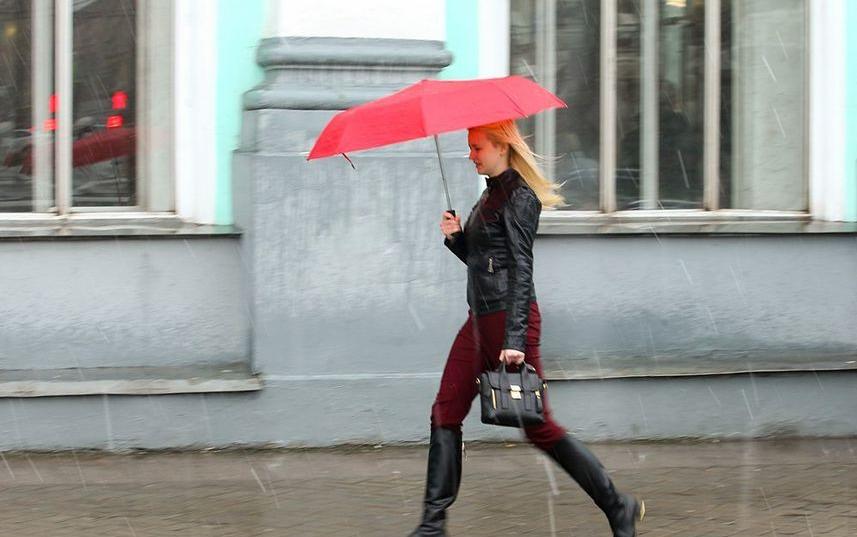 МЧС предупреждает о ливнях и ветре с порывами до 17 м/с. Фото Василий Кузьмичёнок