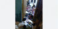Появились подробности о детях, которых петербурженка держала в антисанитарных условиях