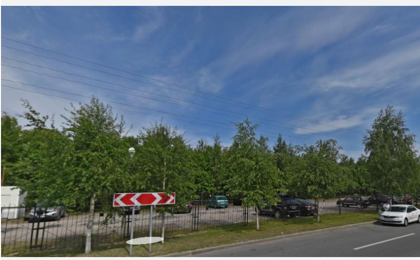 Трагедия произошла в 2017-м году в Юнтоловском лесопарке. Фото Яндекс.Панорамы
