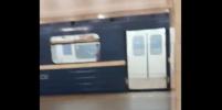 Вагон метро в Петербурге окутало дымом: видео