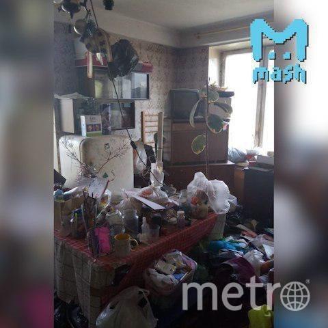"""""""Мы их кормим, чтоб не съели"""": В Петербурге девочка жила в квартире со стаей крыс. Фото Mash на Мойке"""