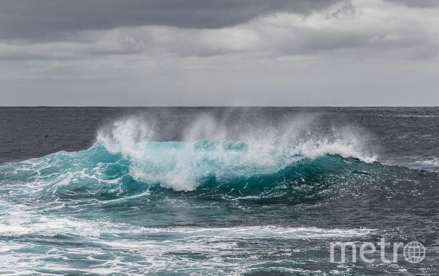 Отправной точкой стала Новая Зеландия, после чего лодка Конюхова взяла курс на мыс Горн в Чили. Фото Pixabay