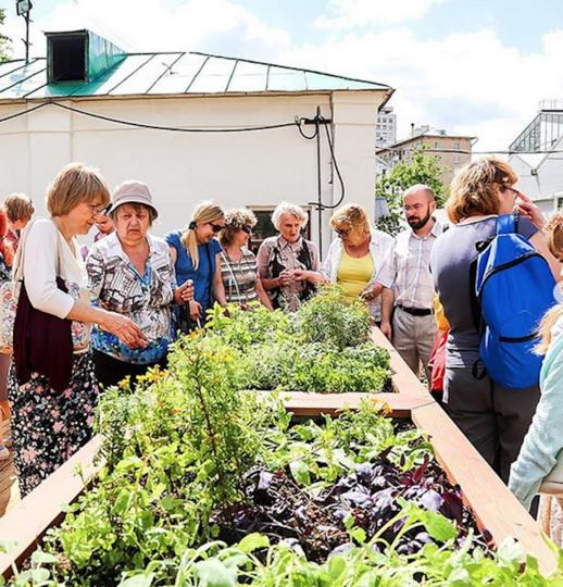 В Москве откроется уникальный тактильный сад. Фото Скриншот https://www.instagram.com/hortus_ru/