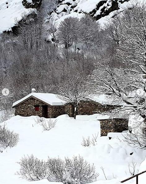 Корсика, Франция. Фото скриншот: instagram.com/station.de.ski.ghisoni.corse/