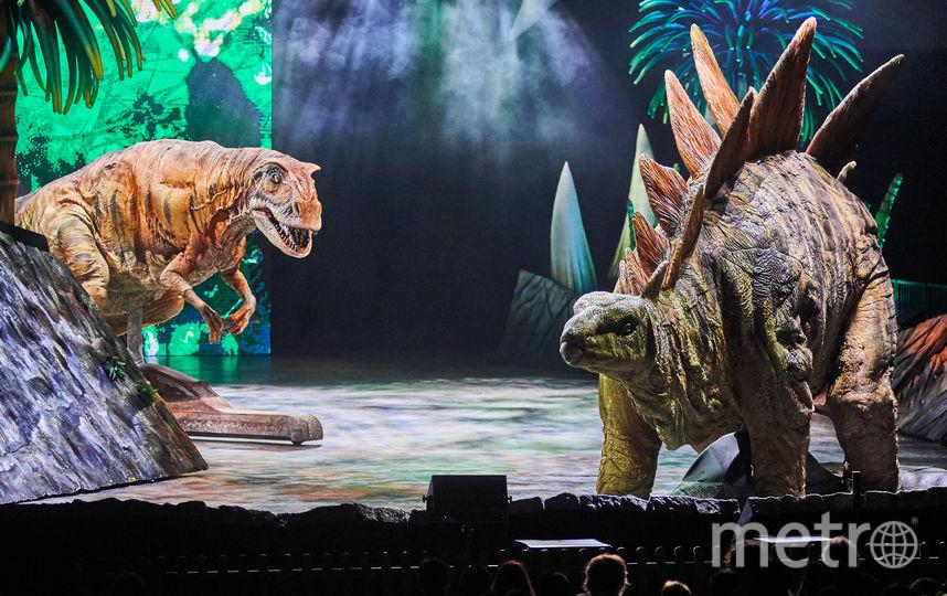 "Репетиции шоу ""Прогулки с динозаврами"". Фото  ILDAR BAKEEV ENTERTAINMENT, Предоставлено организаторами"