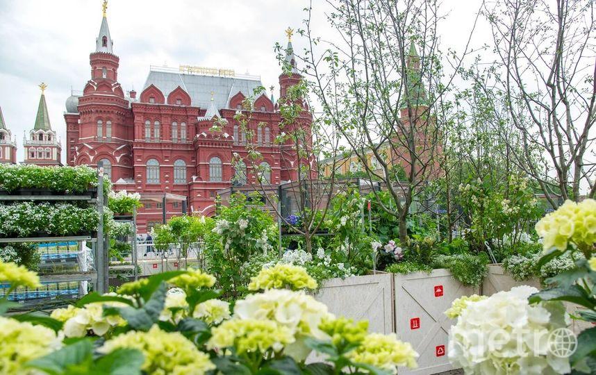 """Арт-фестиваль """"Николин день"""" состоится в Коломенском 18-19 мая. Фото Предоставлено организаторами"""