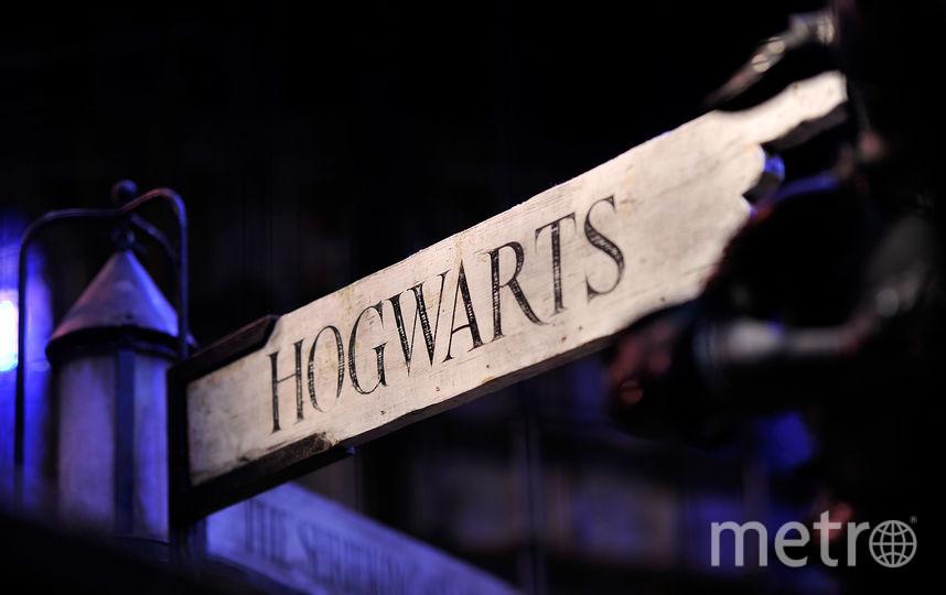 """Концерт """"Музыкальный мир фэнтези. Гарри Поттер и философский камень"""" состоится 18 мая. Фото Getty"""
