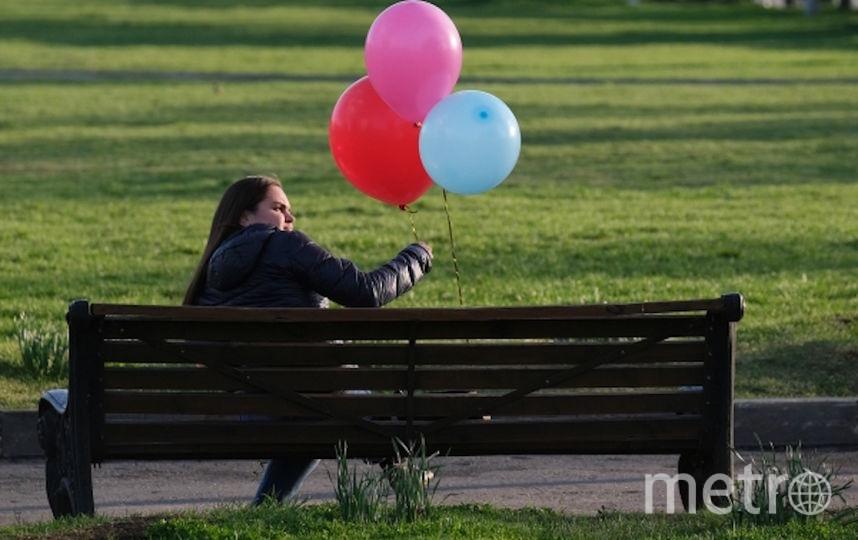 Хорошая погода позволит москвичам провести День парков с пользой. Фото РИА Новости