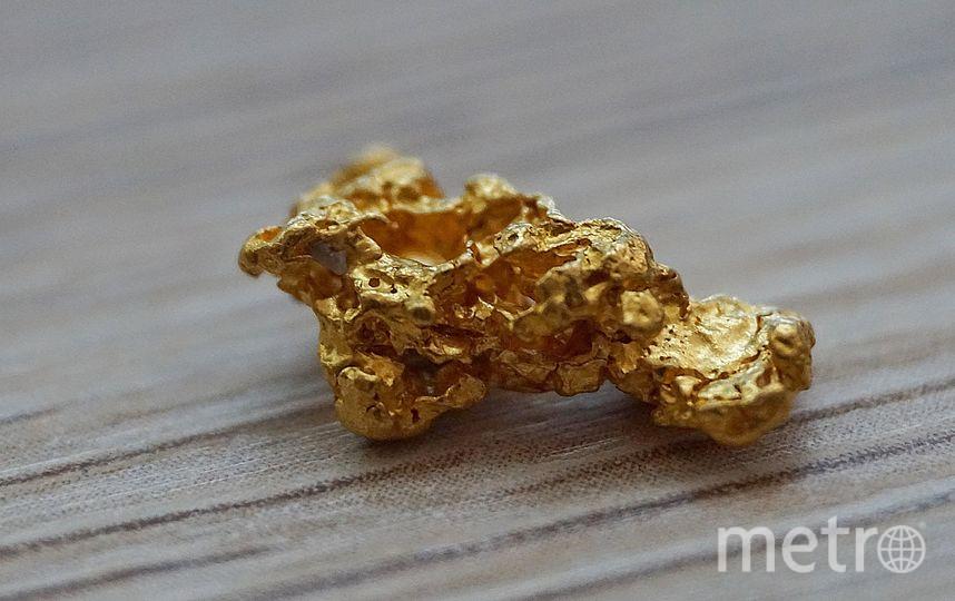 Золотой самородок. Архивное фото. Фото pixabay.com